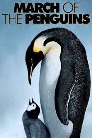 March of the Penguins – Calea Împăratului (2005)