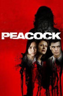 Peacock – Doi (2010)