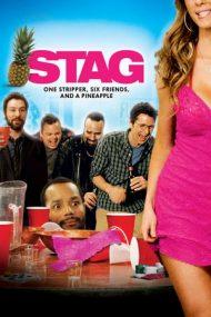 Stag – Petrecerea burlacilor (2013)