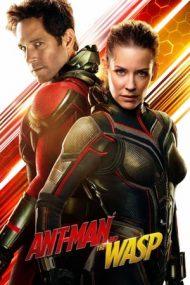 Ant-Man and the Wasp – Omul Furnică şi Viespea (2018)