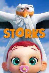 Storks – Berzele (2016)
