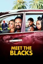 Meet the Blacks (2016)