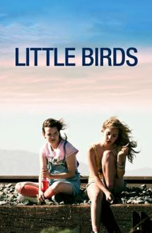 Little Birds – Când prinzi aripi (2011)