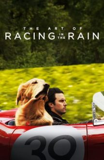 The Art of Racing in the Rain – Povestea incredibilă a lui Enzo (2019)