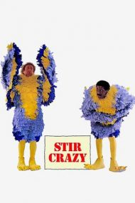Stir Crazy – Nebuni de legat (1980)