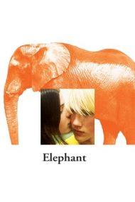 Elephant – Elefant (2003)