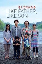 Like Father, Like Son – Așa tată, așa fiu (2013)