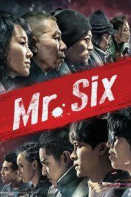 Mr. Six (2015)