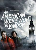 An American Werewolf in London – Un vârcolac american la Londra (1981)