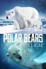 Polar Bears: Ice Bear (2013)