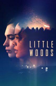 Little Woods – Împotriva legii (2018)