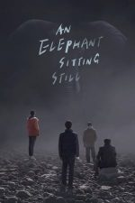 An Elephant Sitting Still (2018)