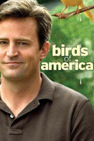 Birds of America – Legile mișcării (2008)