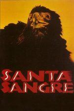 Santa Sangre (1989)