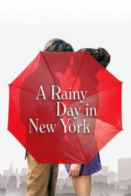 A Rainy Day in New York (2019)