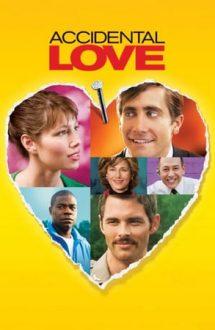 Accidental Love – Dragoste accidentală (2015)