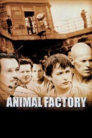 Animal Factory – Închisoarea durilor (2000)