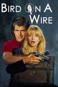 Bird on a Wire – Pasărea pe sârmă (1990)