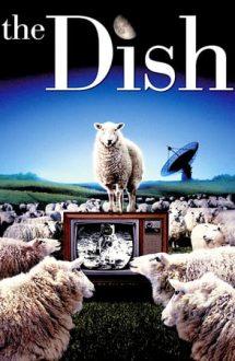 The Dish – Antena (2000)