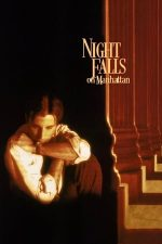 Night Falls on Manhattan – Noaptea in Manhattan (1996)