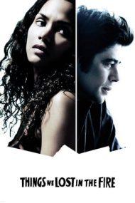 Things We Lost in the Fire – Pierderi dureroase (2007)