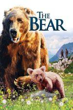 The Bear – Ursul (1988)