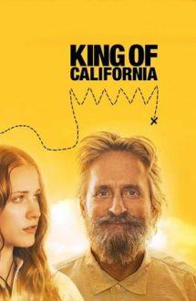 King of California – Regele din California (2007)