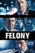 Felony – Secretul unei crime (2013)