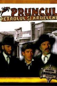 Pruncul, petrolul și ardelenii (1981)