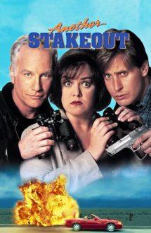 Another Stakeout – La pândă 2 (1993)