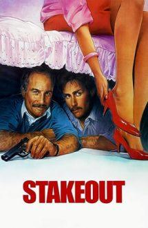Stakeout – La pândă (1987)