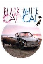 Black Cat, White Cat – Pisica albă, pisica neagră (1998)