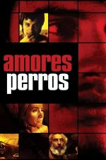 Amores Perros – Iubiri și câini (2000)