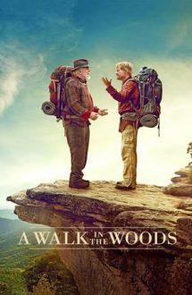 A Walk in the Woods – O plimbare prin pădure (2015)