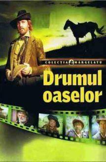 Drumul oaselor (1982)