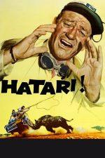 Hatari! (1962)