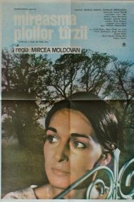 Mireasma ploilor târzii (1984)