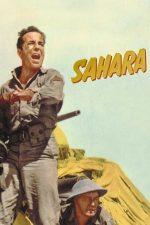 Sahara – Frăția Saharei (1943)