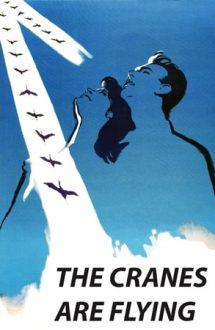 The Cranes Are Flying – Zboară cocorii (1957)