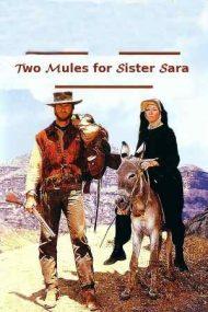 Two Mules for Sister Sara – Doi catâri pentru sora Sara (1970)