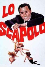 The Bachelor (1956)
