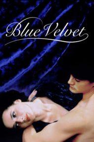 Blue Velvet – Catifeaua albastră (1986)