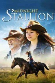 Midnight Stallion – Armăsarul lui Megan (2013)