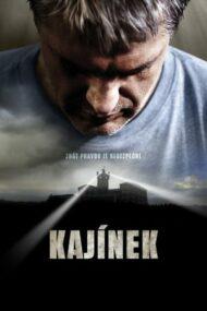 Kajinek (2010)