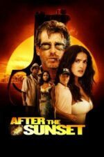 After the Sunset – Hoț de diamante (2004)