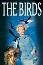The Birds – Păsările (1963)