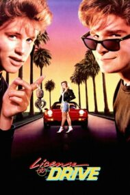 License to Drive (1988)