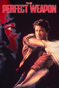 The Perfect Weapon – Arma perfectă (1991)