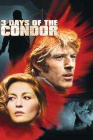 Three Days of the Condor – Cele trei zile ale condorului (1975)