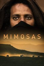 Mimosas – Mimoze (2016)